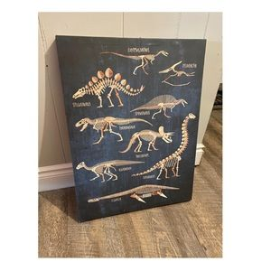 '11 x 14 Dinosaur Canvas Picture'